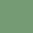 Shell Color , Green Bean